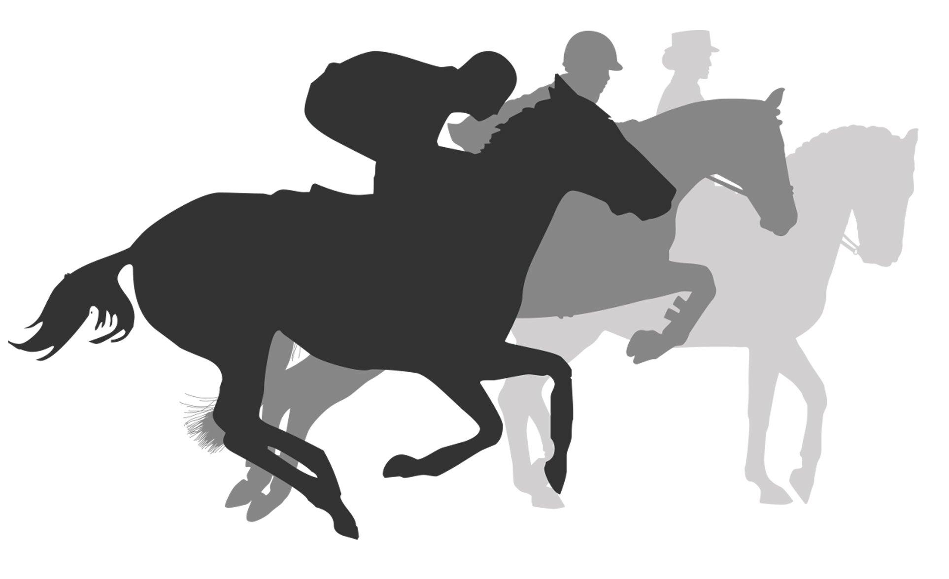 3 horse graphic-3