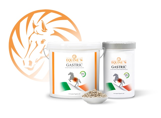 Equine74 Gastric buffers acid in your horse's stomach