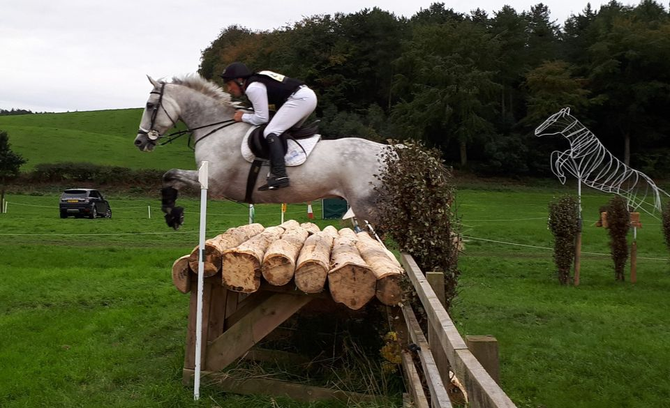 A fistful of rosettes for A Downes Eventing Team.. - Featured Image