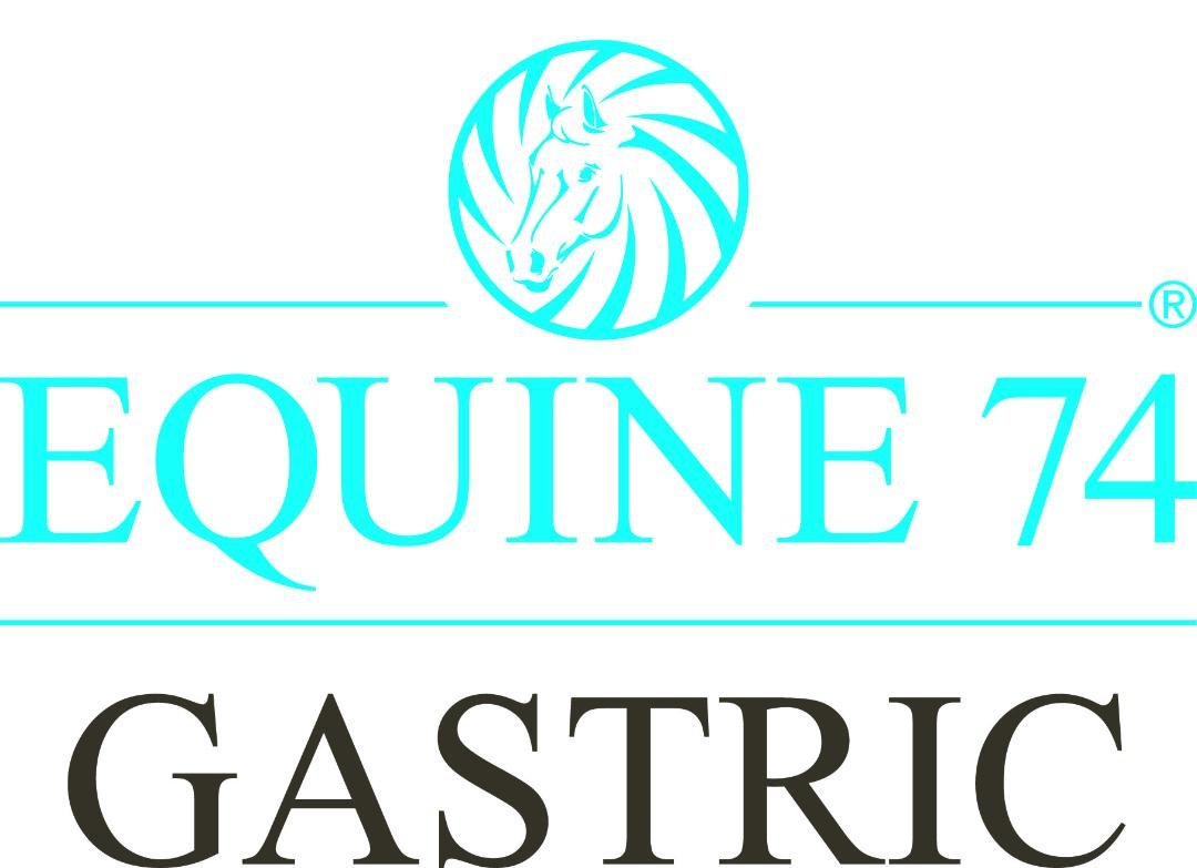 I just can't recommend Equine 74 enough - Featured Image